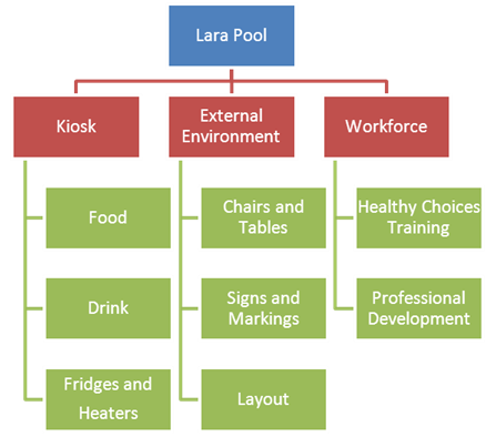 Flow chart of opportunities for change at Lara Pool for the Kiosk, External Environment and Workforce